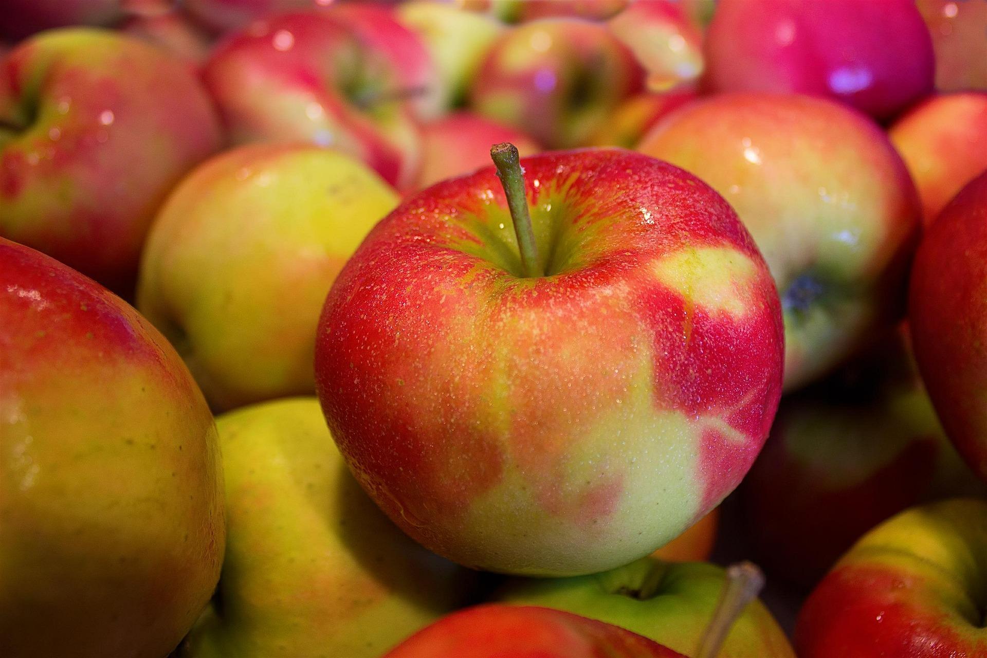 Így fagyaszd le az almát!